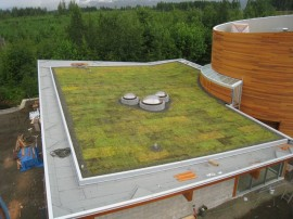 vancouver Island Green Roof Builder