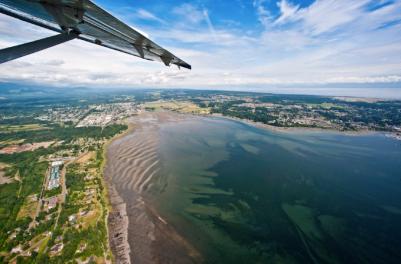 Comox estuary