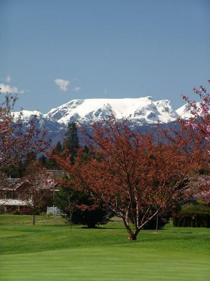 Spring in Crown Isle Resort & Golf Community is a great time to sell your home