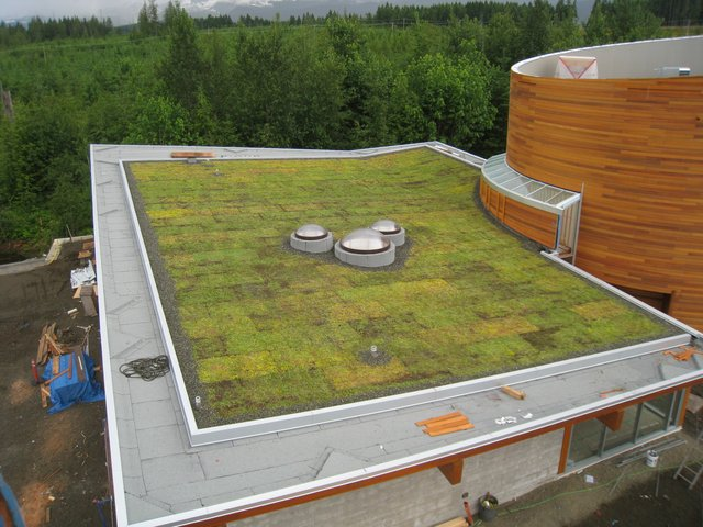 Nutmeg Homes Green Roof Builder Comox