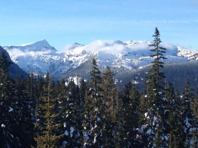 Mount Washington near The Ridge in Courtenay
