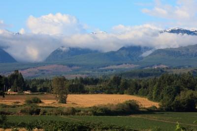The Ridge, Courtenay