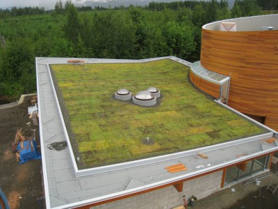 Green living Roof Builder Nutmeg Homes