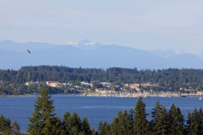 The Ridge Courtenay oceanview lots
