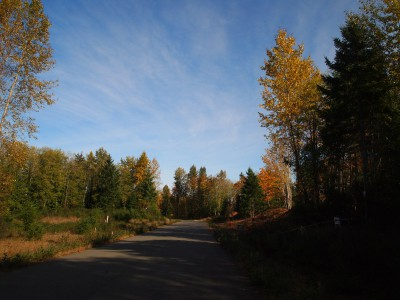 Trent River estate lots for sale