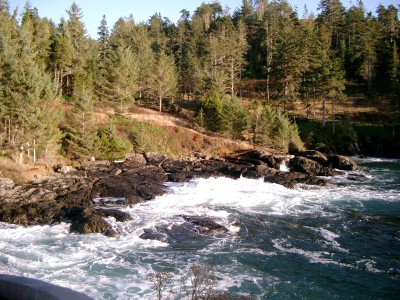 Vancouver Island oceanfront lots for sale